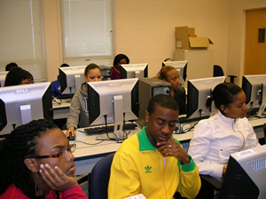 Students learning to use the software